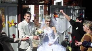 видео свадебное николай и татьяна гомель.avi
