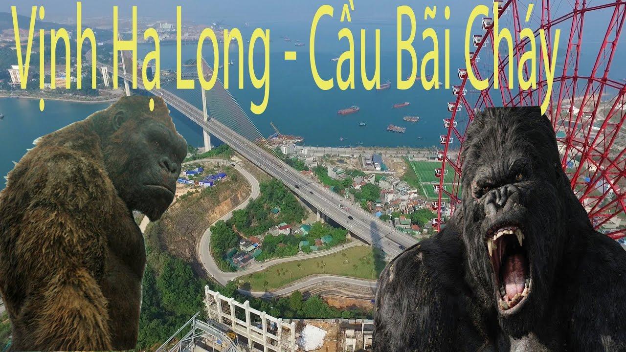 Thành Phố Hạ Long – Vịnh Hạ Long – Quảng Ninh -Việt Nam (Di Sản Thiên Nhiên Thế Giới)