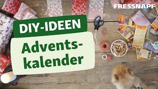 DIY Adventskalender für Hunde & Katzen 🎄| Ideen zum Befüllen
