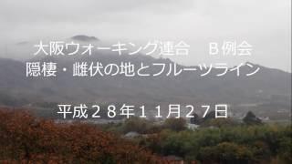 大阪ウォーキング連合の2016年11月のB例会 九度山から高野街道、大和街...