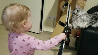 Toddler angers Maine Coon with shoehorn and laughs about that fun, cat bite it & tries to catch it