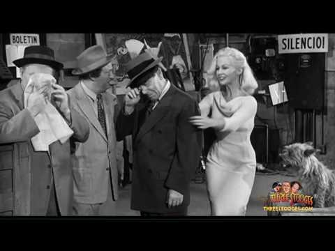 The Three Stooges Tribute GretaThyssen