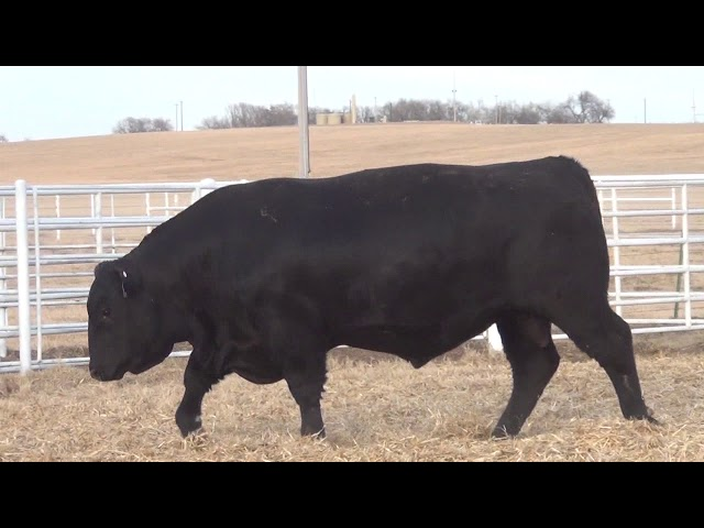 Express Ranches Lot 77