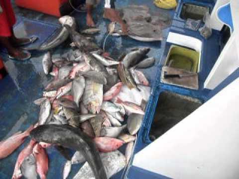 fishing fun south china sea