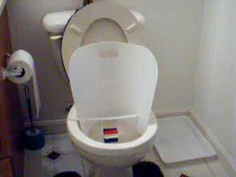 Toilet Training Boys Potty Protector Urine Shield Www