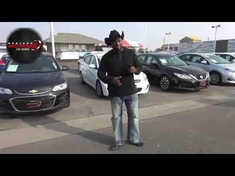 Rodney Appleton - Western Motors