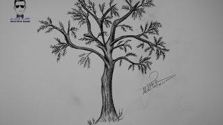 تعلم رسم شجرة بالرصاص خطوة بخطوة للمبتدئين