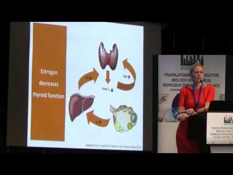 Controversy on thyroid function & autoimmunity for IVF success? Weghofer
