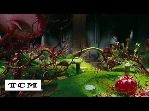 Roald Dahl   Especiales TCM   TCM