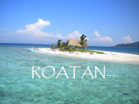 The 7 Most Amazing Things To Do In Roatan!