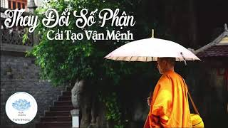 Cuộc Đời Của Bạn Sẽ Thay Đổi Số Phận Khi Nghe Lời Phật Dạy Cải Tạo Vận Mệnh