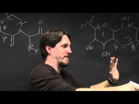 Non-Protein Molecules in Rosetta (Guest Lecture by Dr. Jason Labonte)