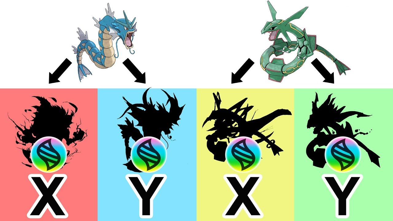 Future pokemon mega evolutions mega rayquaza x y mega - Pokemon mega evolution y ...
