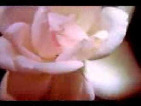 Super hits ever green-Pranaya manthra song- Ezharapponnana(1992)