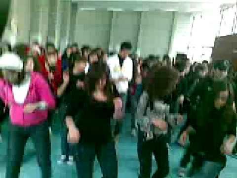 scuola e musica liceo di bronte in delirio fiera del dolce 2000 watt di musica