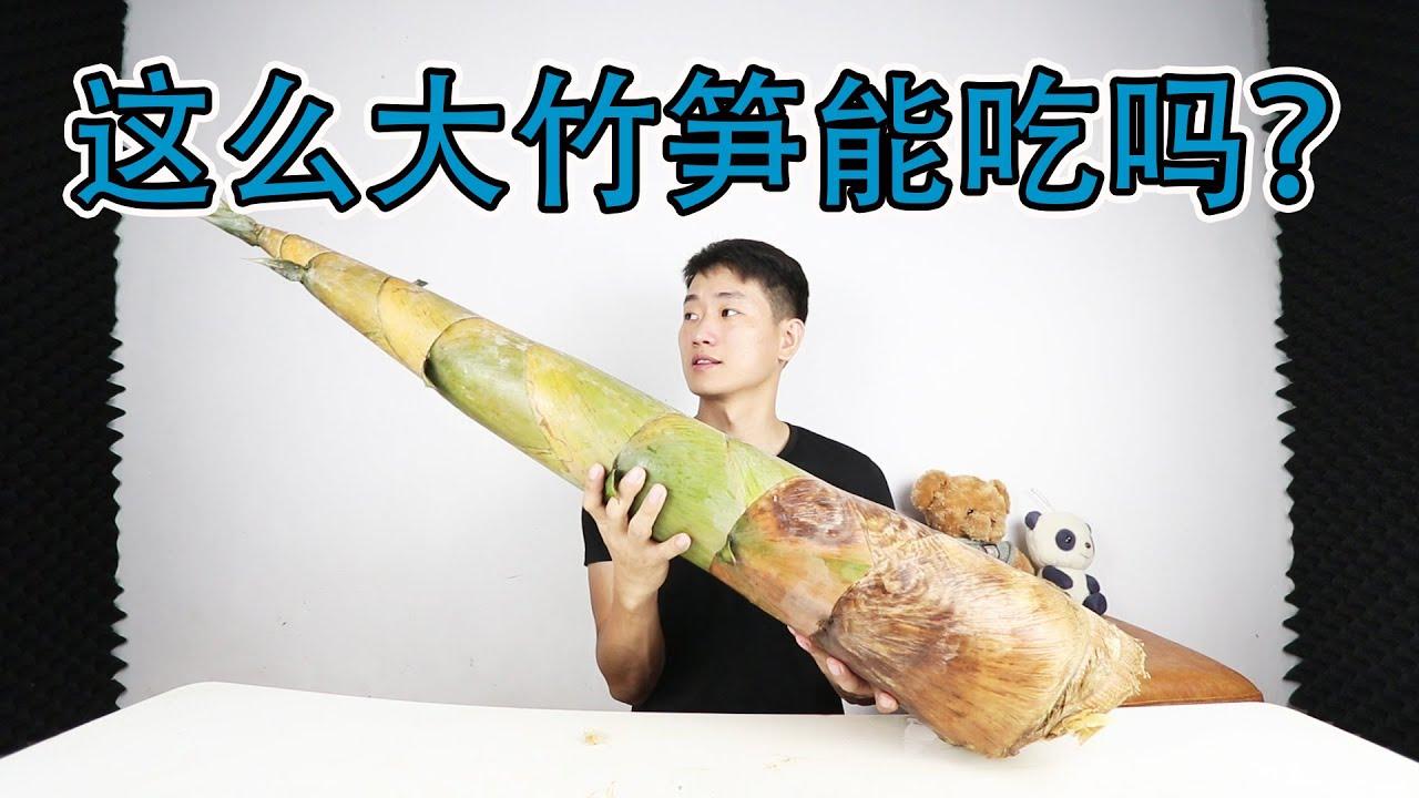 種植達10萬畝的竹筍,到底有多好吃?靚仔親自挖來做道家鄉菜試試【衣谷水原】