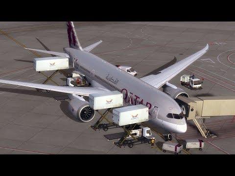 Qatar Boeing 787-8 Dreamliner Doha ✈Budapest [ FSX ]