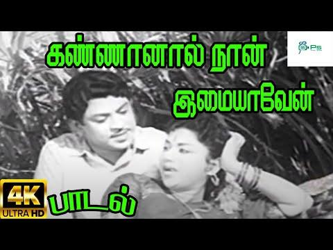கண்ணானால் நான் இமையாவேன்  Kannanal Naan Imaiyaven  T.M. Soundararajan, P. Susheela,Love H D Song
