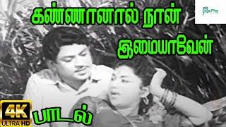 கண்ணானால் நான் இமையாவேன் |Kannanal Naan Imaiyaven| T.M. Soundararajan, P. Susheela,Love H D Song