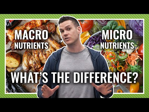 Macronutrients vs Micronutrients: What's Most Important When Dieting?