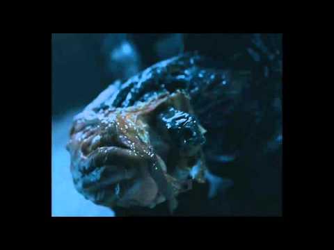 AVP Deleted Scene: Predator Humor + Predator Split up Story ٩(͡๏̯͡๏)۶