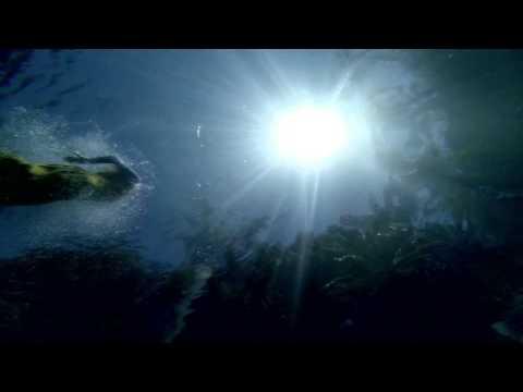 Ursula 1000 - Faded Denim Wash