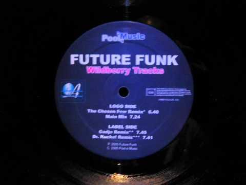Future Funk.Wildberry Tracks.Dr.Kucho Remix.Pool E Music 2005.