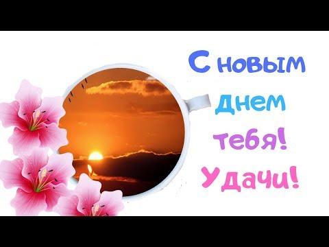 Хорошего дня тебе! Прекрасного настроения! Красивые поздравления от души