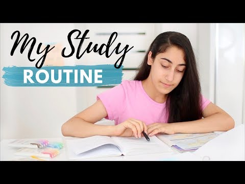 My Study Routine 2019 |  Study Tips + Tricks For A Productive Study Session!