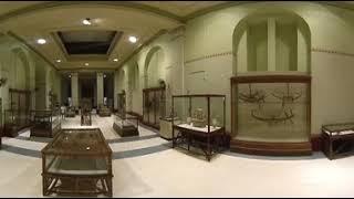 جولة في المتحف المصري بتقنية 360