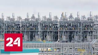 Смотреть видео Уха с нефтью. Специальный репортаж Антона Борисова - Россия 24 онлайн