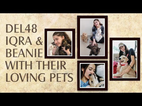Iqra & Beanie Playing with their Loving Pets | Cute Cat & Dog Video | DEL48