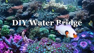 How To: Aquarium Water Bridge
