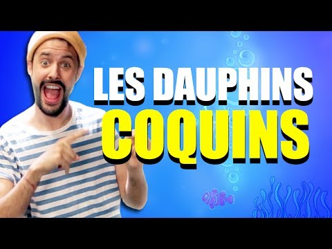 LES DAUPHINS COQUINS