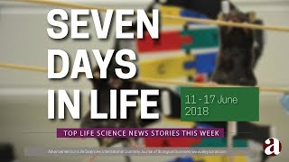 Seven Days in Life (11 - 17 June 2018)