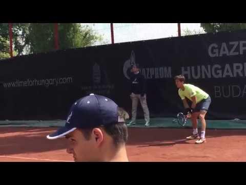 Aljaz Bedene vs Marius Copil, Gazprom Hungarian Open, Budapest, 2017-04-25