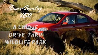 Bear Country USA Travel Vlog South Dakota