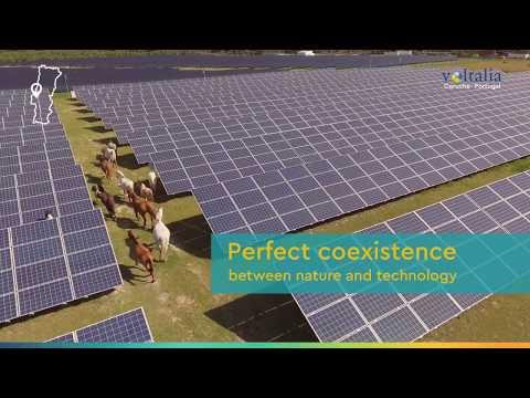 Voltalia - Coruche's solar park - Portugal