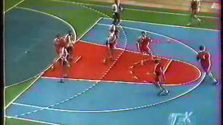 Гандбол-1995. Беларусь - Франция