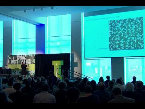 Jeannie Suk: IDEAS Boston at UMass Boston 2011