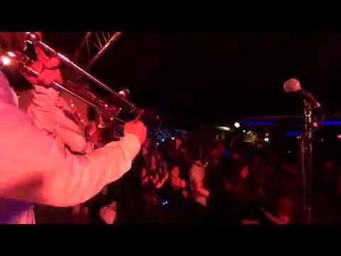 Molotov Brothers - Teaser Live