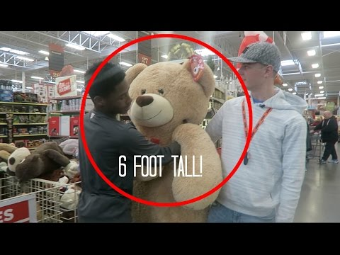 WE ARE GETTING INSIDE THIS 6 FOOT BEAR | Bruhitszach