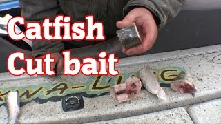 How to cut skip jack for catfish Bait