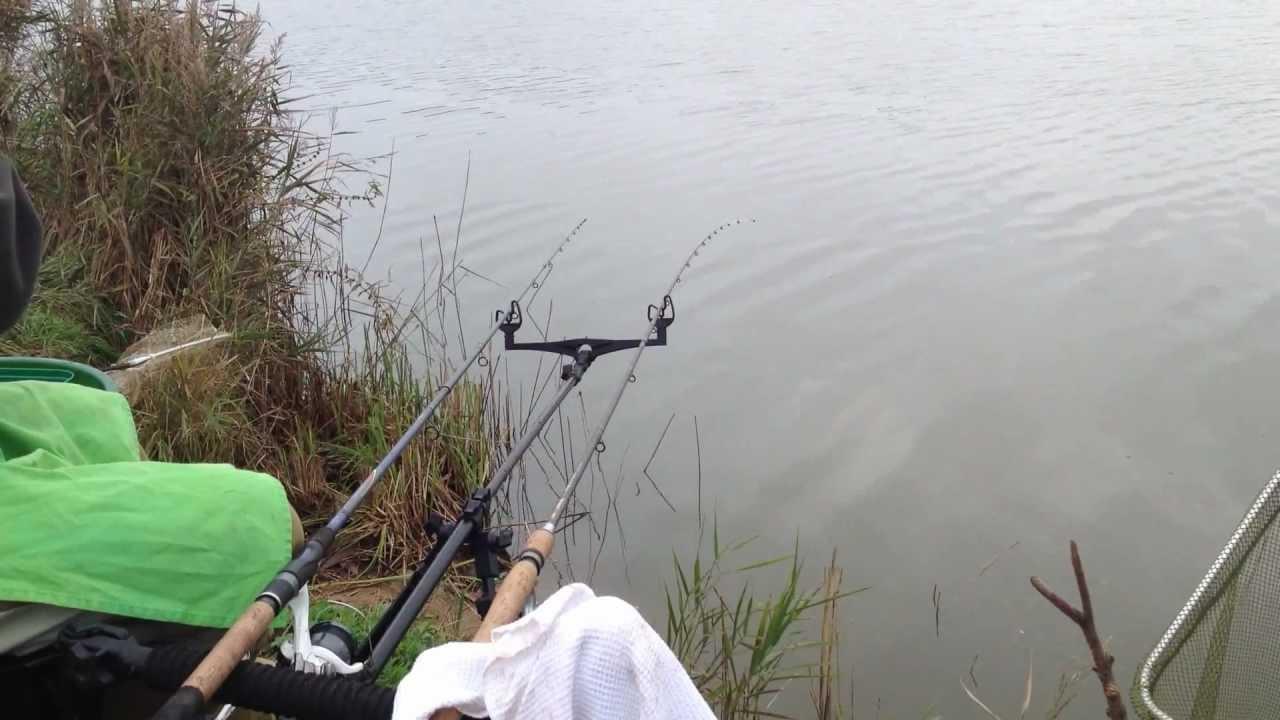 истринский район рыбалка видео