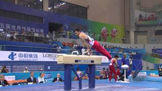 HEGI Oliver (SUI) – 2014 Artistic Worlds, Nanning (CHN) – Qualifications Pommel Horse