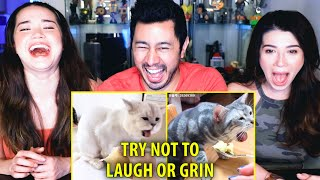 TRY NOT TO LAUGH OR GRIN WHILE WATCHING FUNNY ANIMALS #23   Reaction   Jaby Koay, Alina & Achara