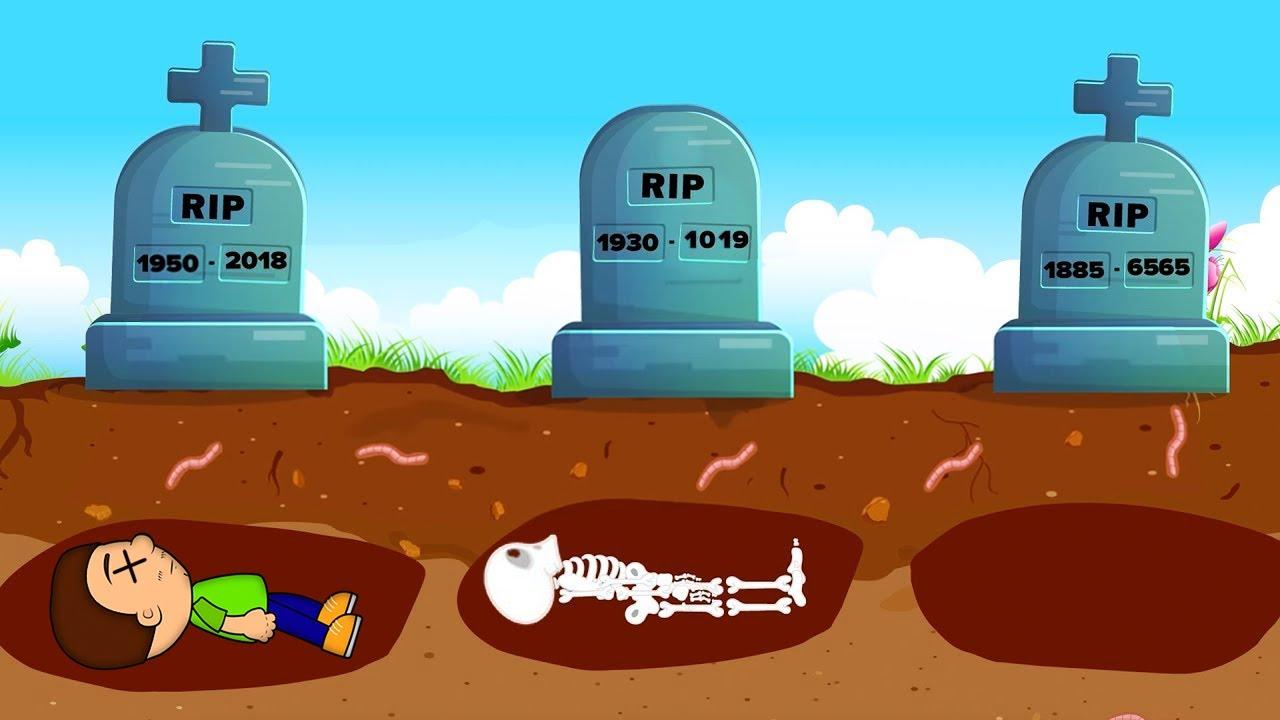 Что будет с телом после смерти?