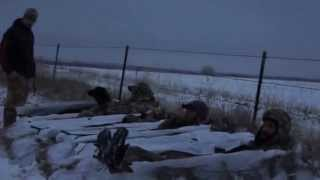 Tornado Alley Waterfowl - The Kansas Dream