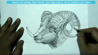 How to Draw a Ram(goat) | YZArts | YZArts