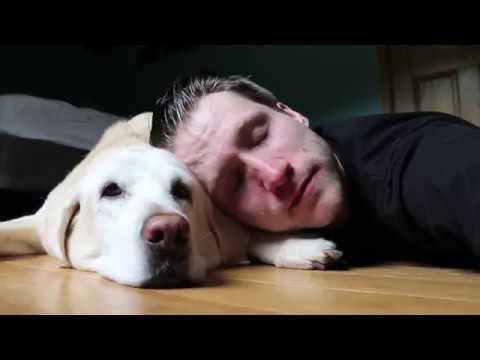 Tribute To McJuggerNuggets' Beloved Family Dog, Ella